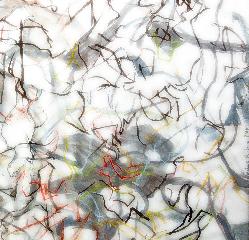 Série les Oiseaux 2 - fusain, calque, graphite sur papier - Norbert Hillaire, 2007